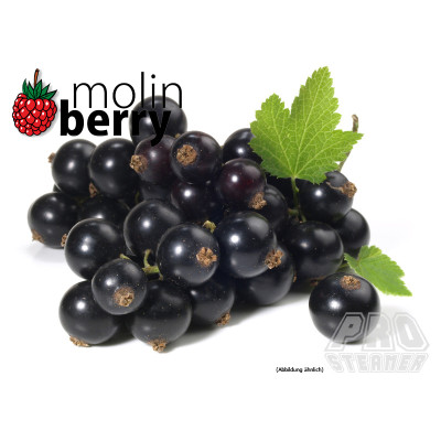 molin - Sharp Blackcurrant