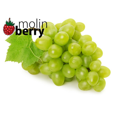 molin - Queen Grapes