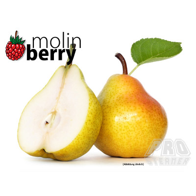 molin - Shape Up Pear